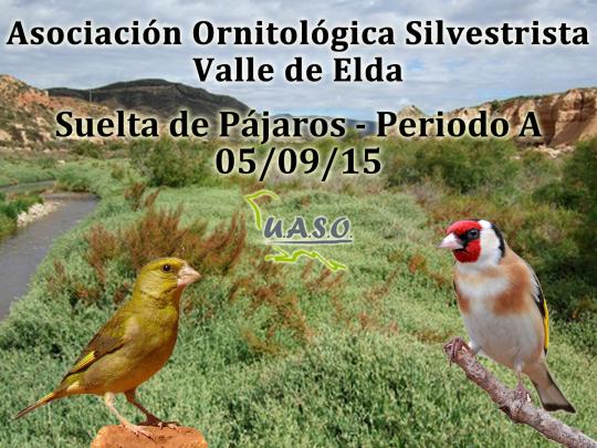 Suelta de Pájaros Periodo A Valle de Elda