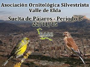 Suelta de Pájaros Periodo B Valle de Elda