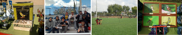 IV Campeonato de la Regularidad UASO